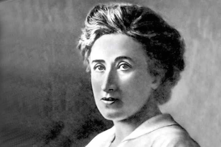 The revolutionary ideas of Rosa Luxemburg