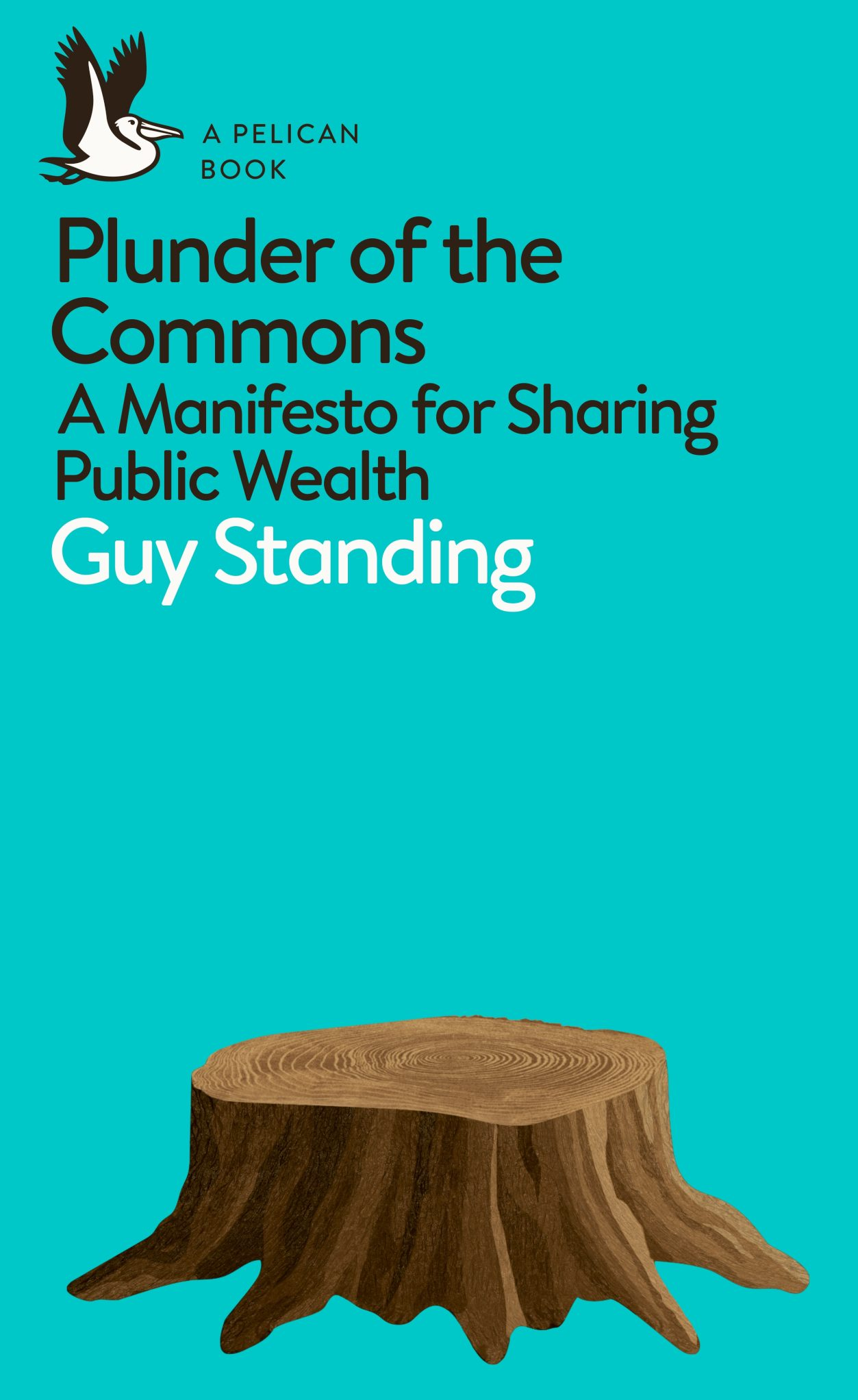 Plunder of the commons book
